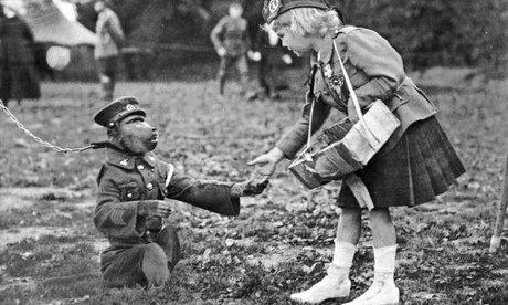 Джеки-бабуин был талисманом американской роты морской пехоты. Бабуин носил рации, маршировал и ползал в окопах. Был ранен во время того, как отчаянно пытался построить стену из камней вокруг себя в качестве защиты от летящей шрапнели. Джеки ампутировали ногу, но он вернулся домой по окончанию войны. 1945 г.