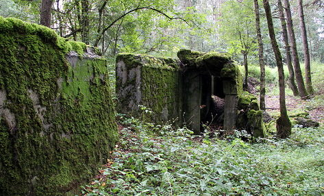Остатки бункеров.