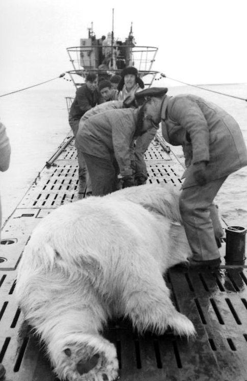 Зимнее сафари на подлодке. Северное море. Сентябрь 1943 г.
