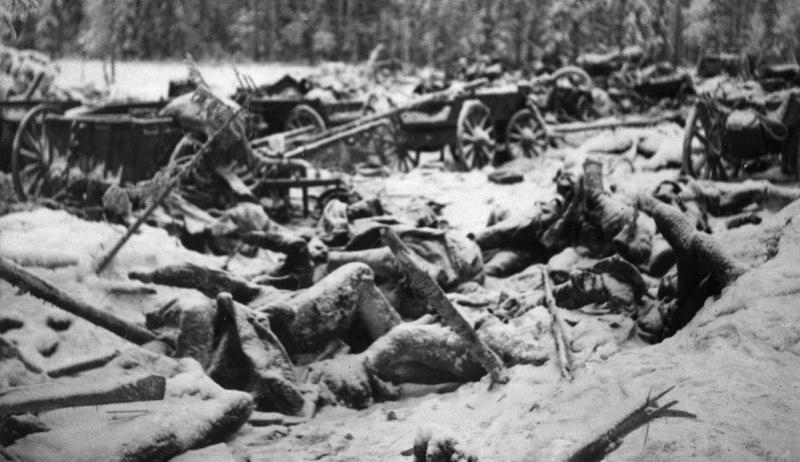 Разбитый советский обоз в районе финской деревни Суомуссалми. Январь 1940 г.
