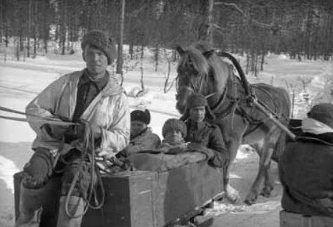 Перевозка финских раненных. Февраль 1940 г.
