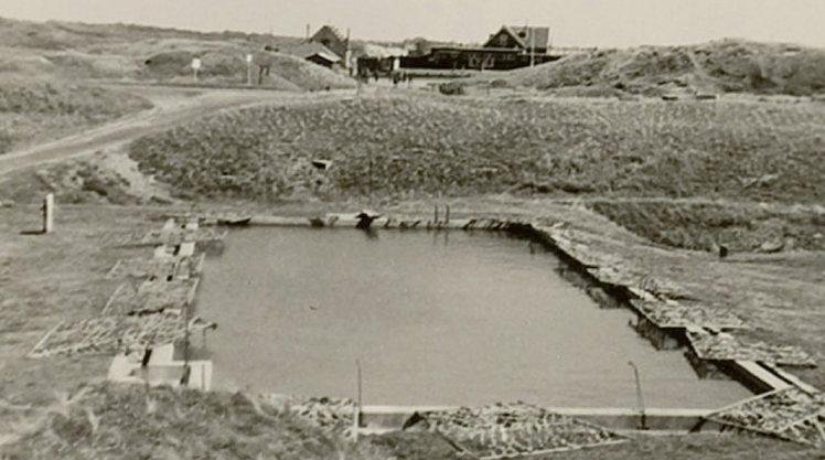 Тот же бассейн в 1953 г.