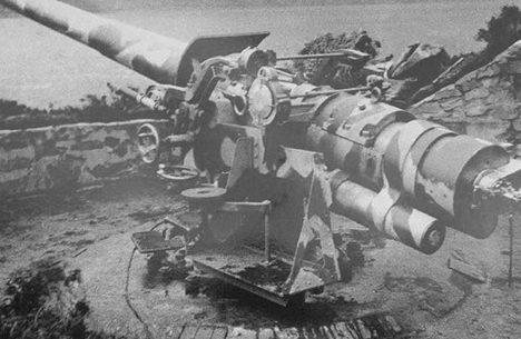 130-мм орудия 1915 года выпуска на открытых позициях во время войны.