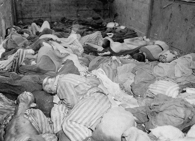 Тела узников Дахау, погибших во время эвакуации.