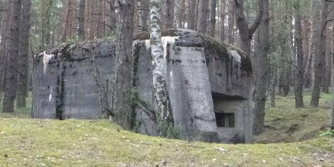 Одноамбразурные ДОТы у деревни Шубенице.