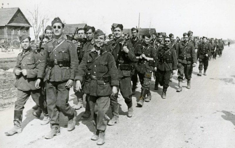 Солдаты «Голубой дивизии» на Восточном фронте. 1942 г.