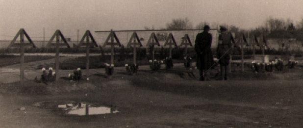 Немецкие могилы. Осень 1941 г.