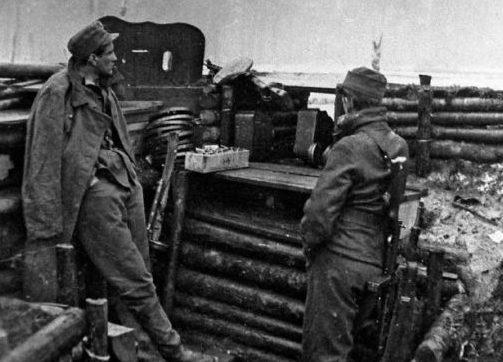 Шведские добровольцы 6-й горнопехотной дивизии СС «Норд». 1942 г.