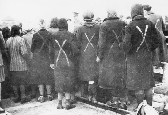 Женщины-заключенные концлагеря «Равенсбрюк» перед посадкой в «белые автобусы» Шведского Красного Креста. Апрель 1945 г.