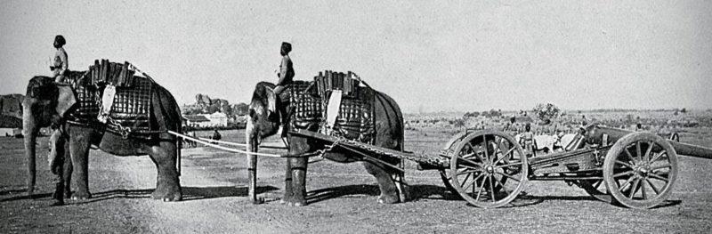 Караван слонов перевозит орудия Британской Индийской армии. 1900 г.