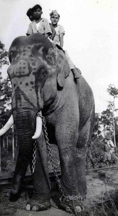 Американский солдат и местные дети на слоне. Бирма, 1943 г.