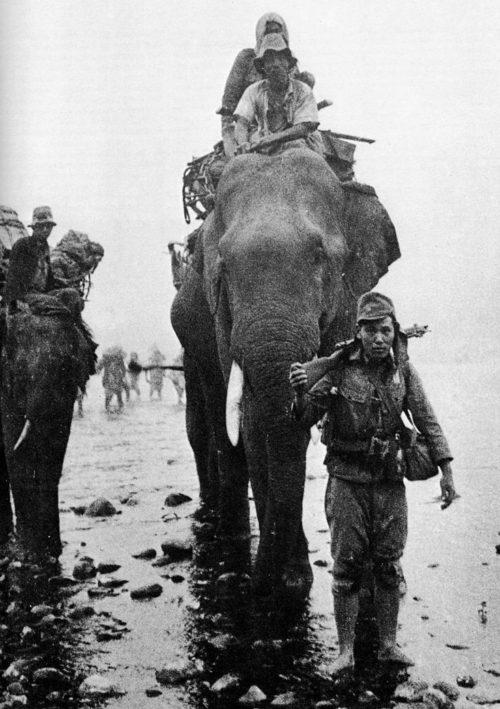 Японские войска на слонах в Бирме. 1944 г.