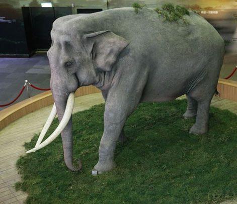 Памятник слону Линь Ван.