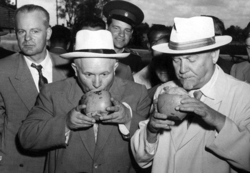 Н. Булганин и Н. Хрущев на чайной плантации. Индия. Ноябрь 1955 г.