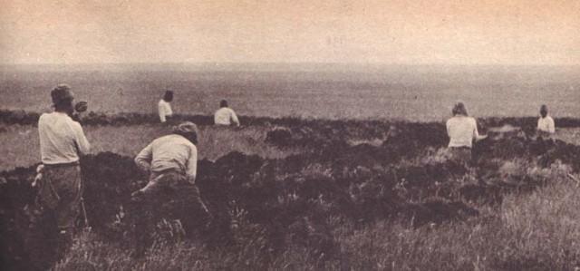 Оборудование японских позиций. 1939 г.