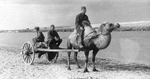 Бойцы Красной Армии осваивают новое «транспортное средство». 1939 г.
