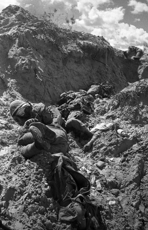 Тела японских солдат, погибших во время боев на Халхин-Голе. 1939 г.