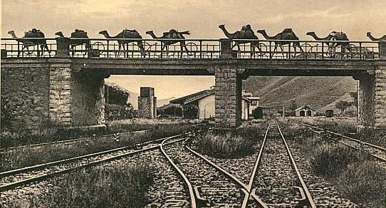 Итальянская рекламная открытка из Восточной Африки.