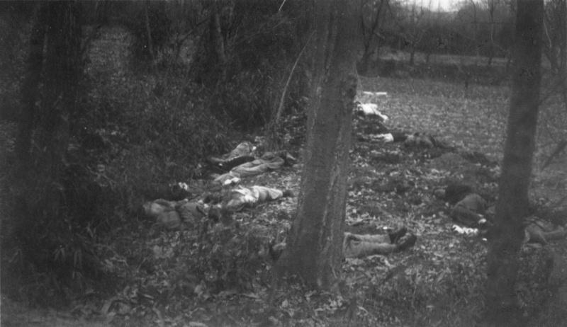 Казненные японскими солдатами китайцы в лесу в окрестностях Нанкина. Декабрь 1937 г.