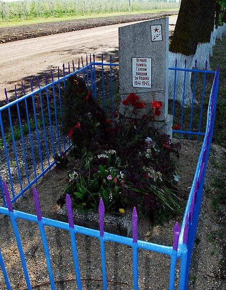 Славянский р-н. Могила неизвестного летчика по дороге из Славянска-на-Кубани в станицу Петровскую.