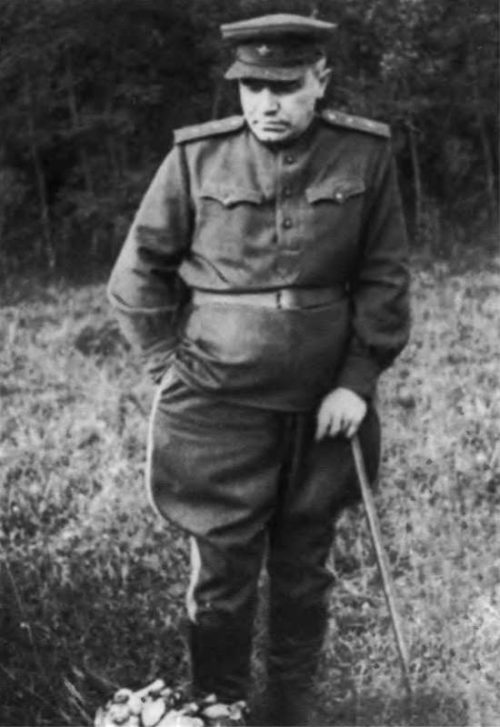 Берзарин после ранения. 1943 г.