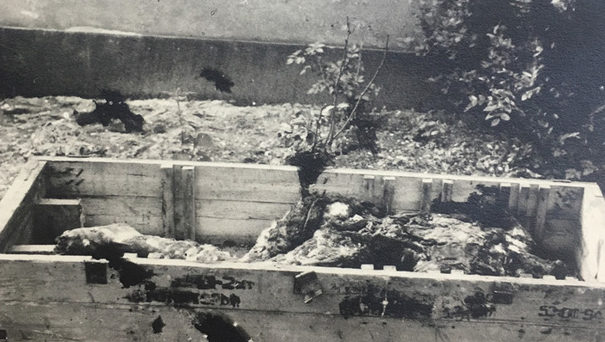 Ящик с обгорелыми останками Гитлера направленными на экспертизу.