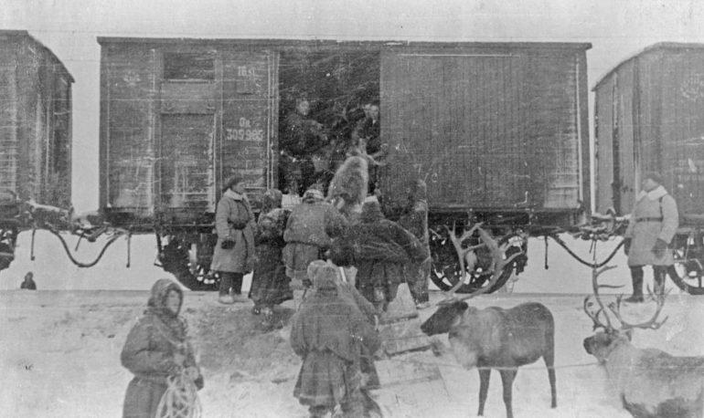 Погрузка оленей в железнодорожные вагоны в Мурманске для отправки на фронт. 1941