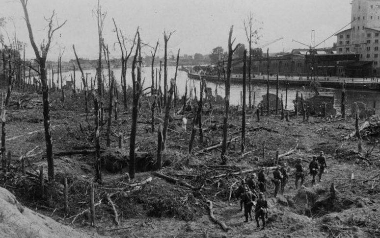 Часть леса на Вестерплатте после боев.