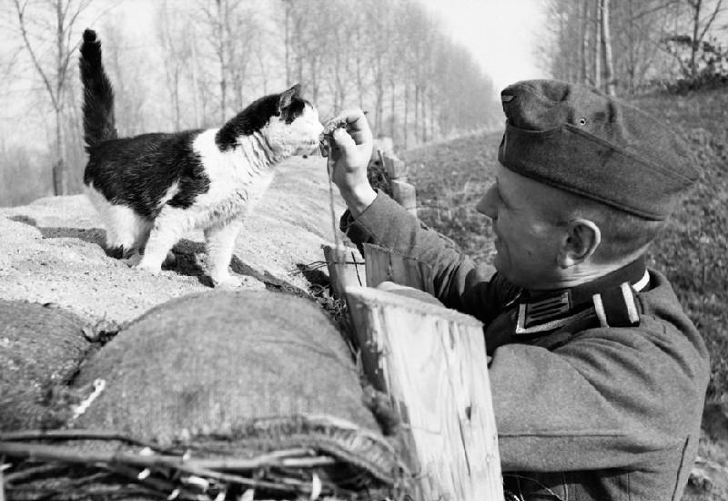 Немцы на «Смешной войне». Октябрь 1939 г.