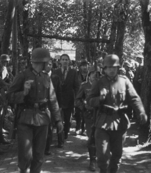 Немцы ведут к месту расстрела жителей Панчево. 22 апреля 1941 г.