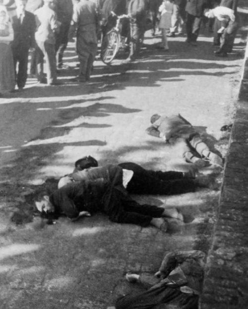 Расстрелянные немцами жители городка Панчево. 22 апреля 1941 г.