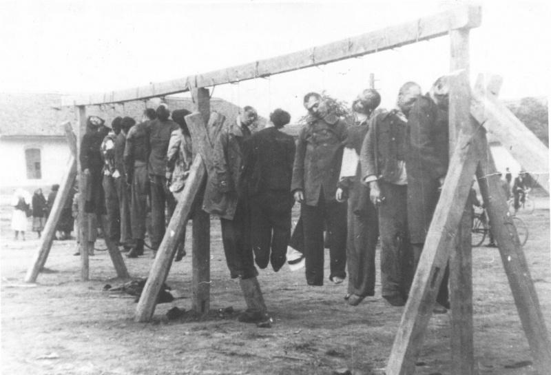 Повешенные немцами заключенные югославского концлагеря Зренянин. Сентябрь 1941 г.