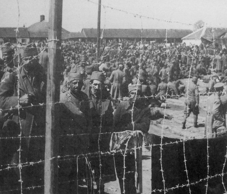 Лагерь для югославских военнопленных под Белградом. 1941 г.