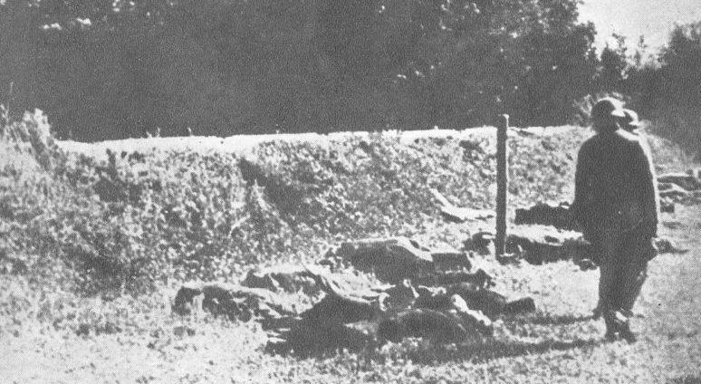 Первый расстрел в районе Баньице. Белград, июль 1941 г.
