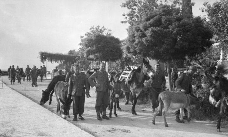 Проведение полицейской операции. 1943 г.