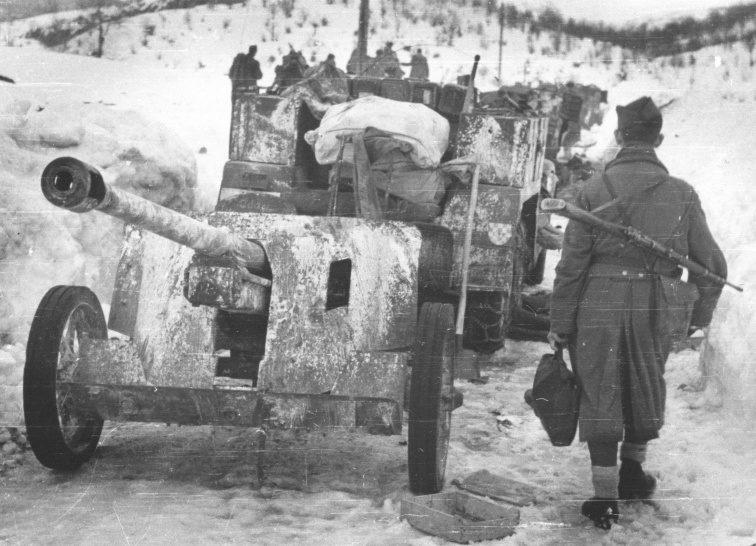Колонна трофейных 50-мм противотанковых орудий, захваченных партизанами у Невесинье. Январь 1945 г.