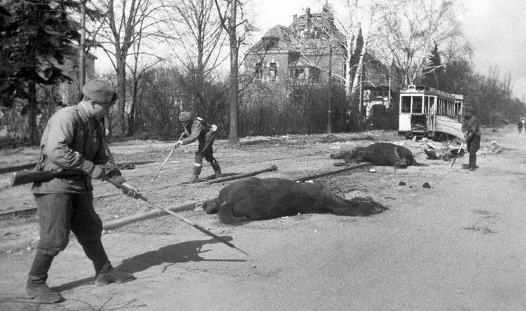 Разминирование города. Апрель 1945 г.