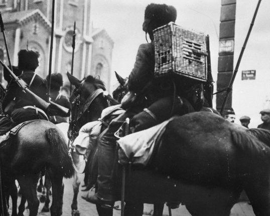Бельгийский кавалерист с голубиной клеткой. 1916 г.