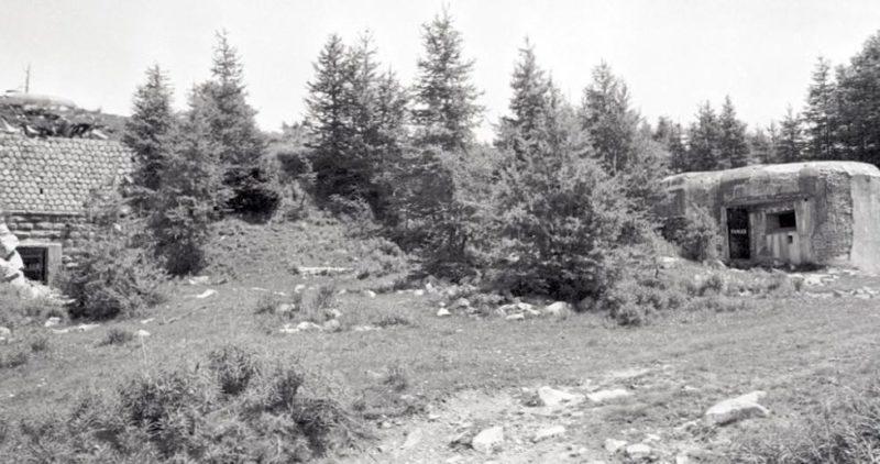 Вид блоков №1 и №2 в годы войны.