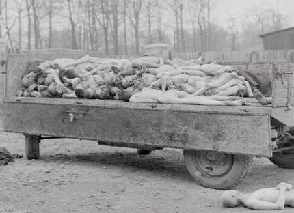 Тела детей, погибших после сдачи крови в концлагере Саласпилс. Латвия, 1944 г.