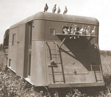 Американская мобильная голубиная станция.