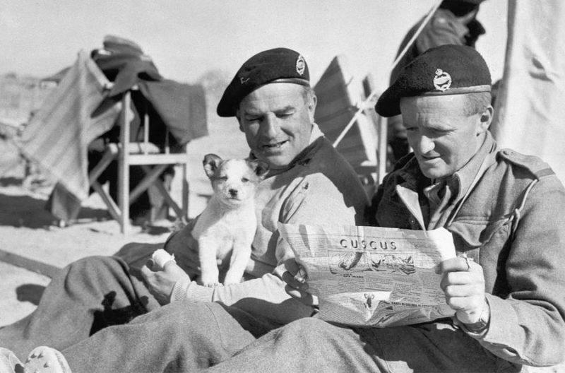 Лагерь британских войск. 1941 г.