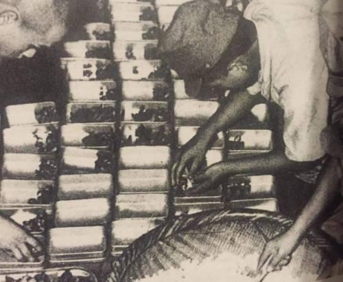 Подготовка бачков с пищей для раздачи солдатам.