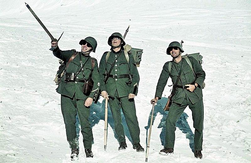 Тренировки птиц во время патрулирования в горах.