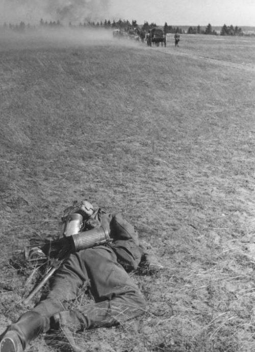 Погибший немецкий солдат у Рославля. Лето 1941 года.