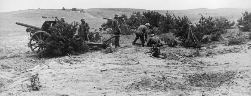 Батарея немецких 100-мм пушек под Новгородом. Август 1941 г.