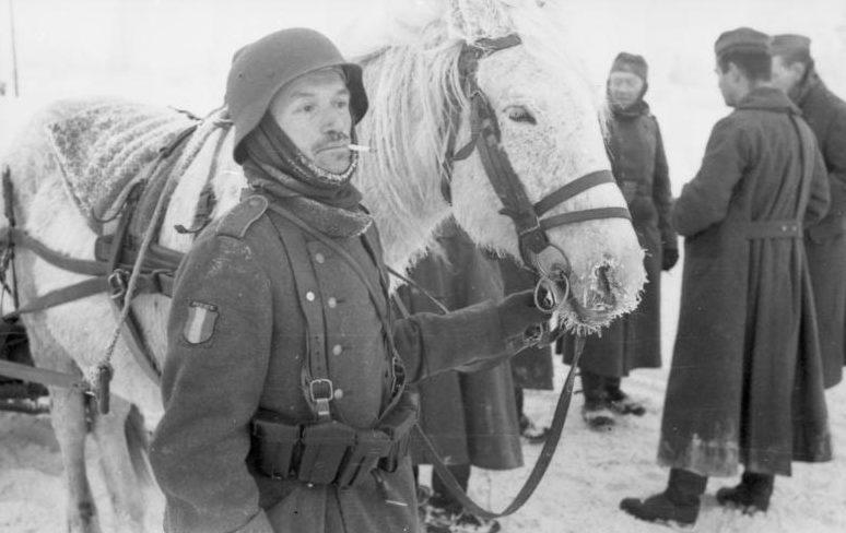 Солдаты французского легиона. Ноябрь 1941 г.