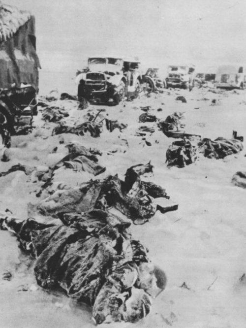 Замерзшие тела итальянских солдат у разбитой колонны тягачей на дороге под Сталинградом. 1943 г.