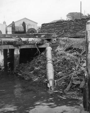 Невзорвавшаяся торпеда на Гарден-Айленде. Сидней, 10 июня 1942 г.