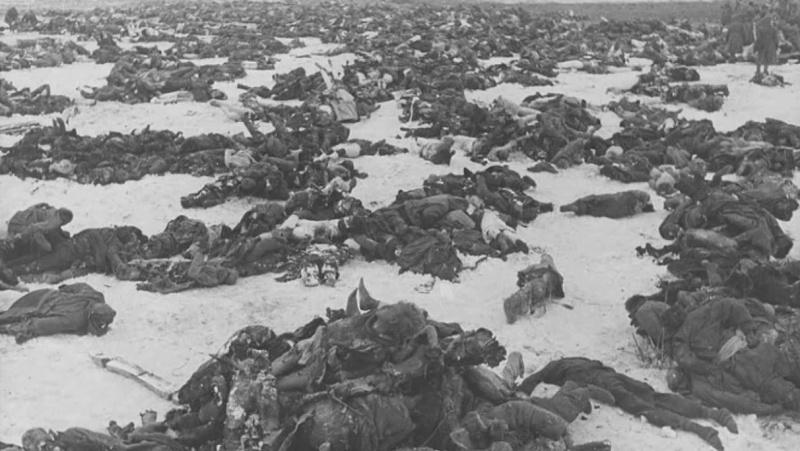 Тела немецких солдат в поле под Сталинградом. 1943 г.
